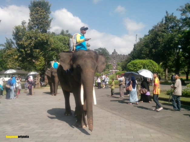 the elephants convoy. Location in borobudur temple, Magelang, Central Java, Indonesia