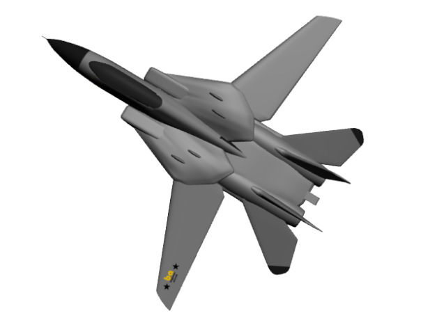 F-14 begawan aircraft
